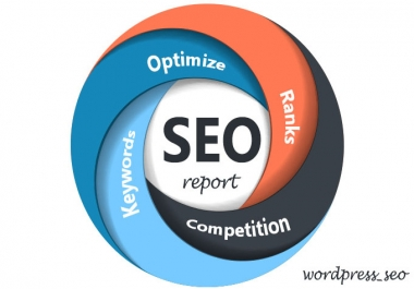 create a full Seo Report for your website using IBP