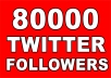Provide You 80,000+ Real/Human/Unique/Active Twitter Followers 100% Safely.